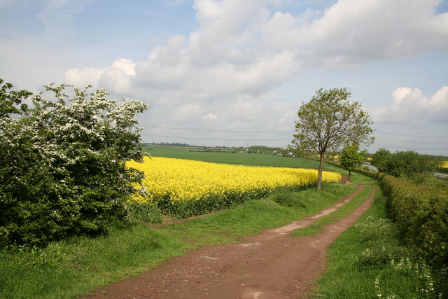 Farm track near Dadsley Well Bridge
