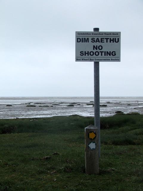Dim Saethu / No shooting