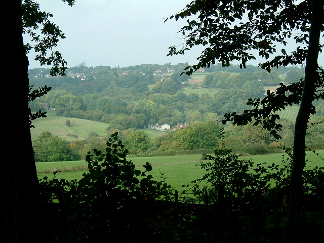 Willingford from Blackbrooks Wood