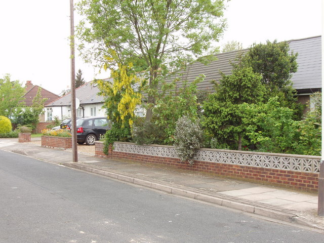 Spring foliage and laburnum, Lowfield Road, North Acton