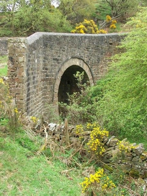 Cuckoo Bridge