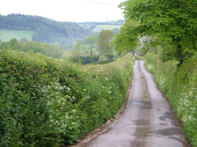Lane to Higher Ashton