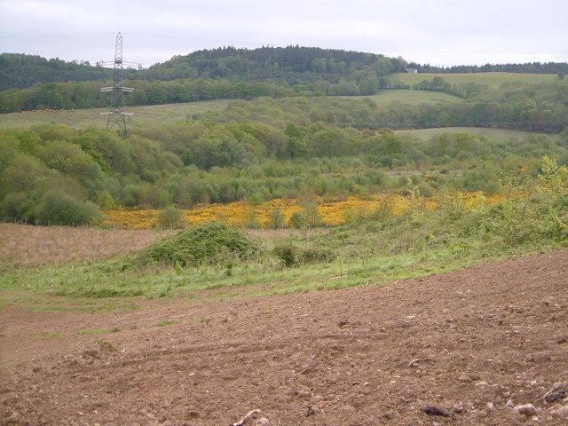 View from Tick Lane, Doddiscombsleigh