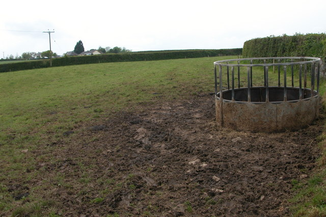 Cattle feeder near Bircham Farm