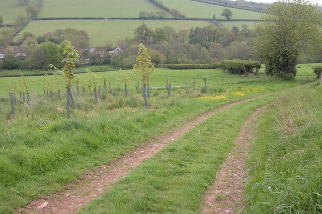 Bridleway to Mullybrook Mill