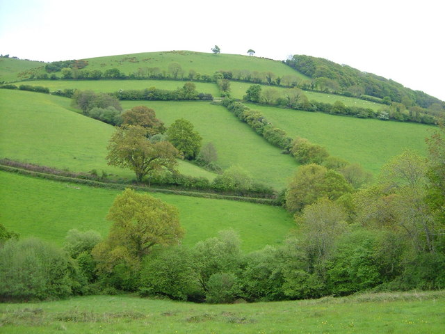 Batt's Brook valley below Doddiscombsleigh