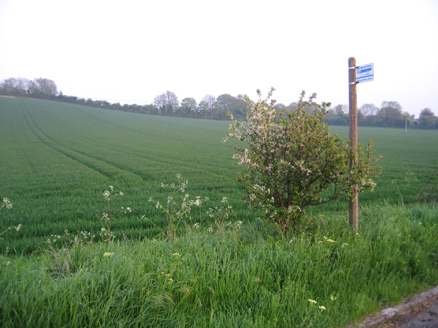 Slopes of Toot Hill, Orwell, Cambs