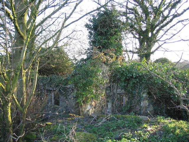 Derelict cottage at Llanbabo