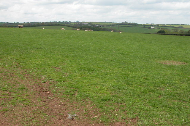 Farmland to the west of Burrington