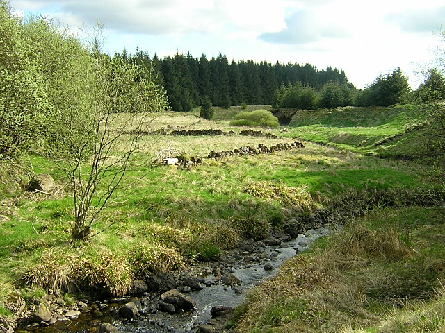 Burn and Dykes in Carron Valley Forest