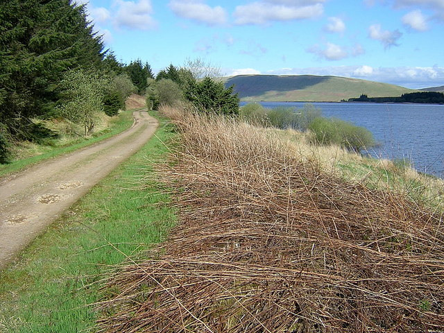 Track Along Shore of Carron Valley Reservoir
