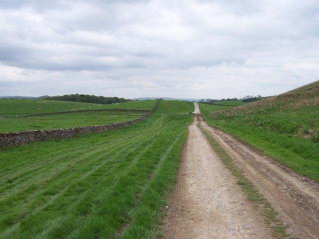 Track across Coniston Moor