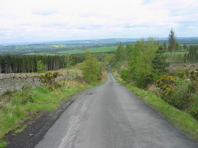 Road through Slaley Forest