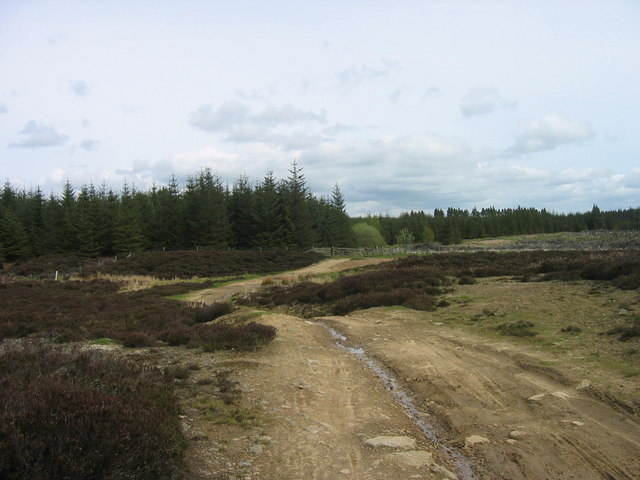 Start of bridleway at Actoncleugh Head, Slaley Forest