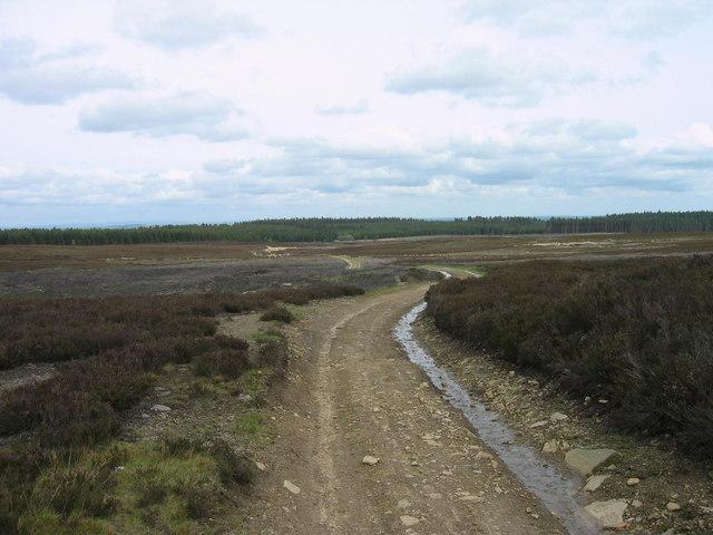 Bridleway Blanchland Moor