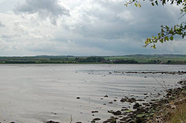 West end of the Eden mud flats