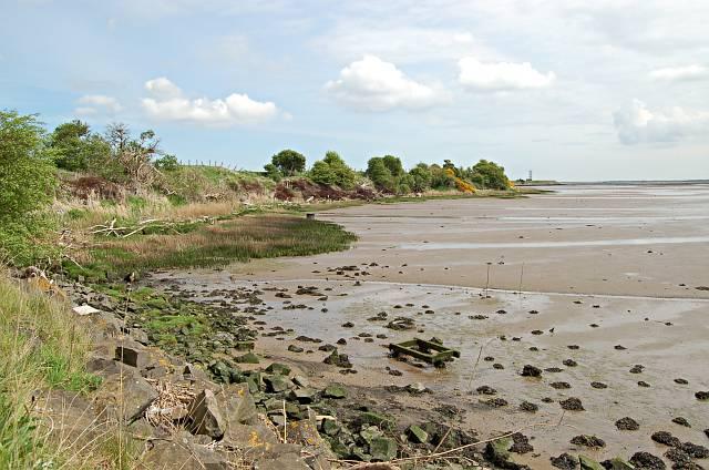 Eden mud flats