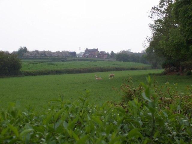 Moss Hill Farm
