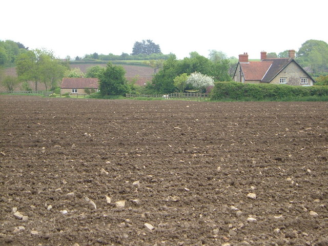 Ploughed field at Frost Street