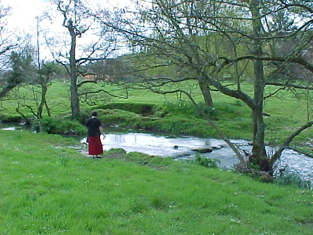 stream at Loders