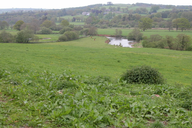 River Taw Valley