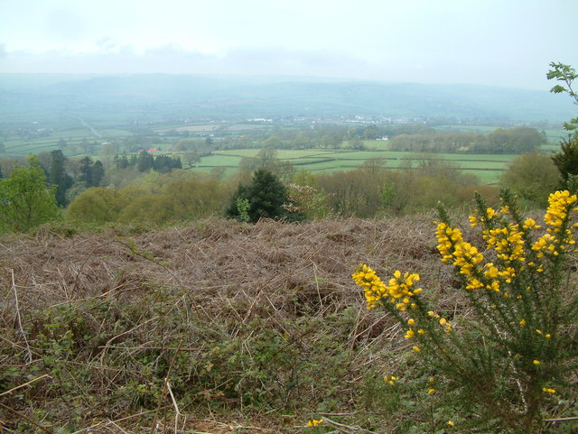 View towards the Axe valley