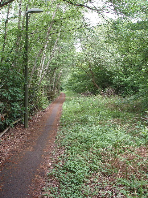 Cycle path and footway, north of Woking by A320