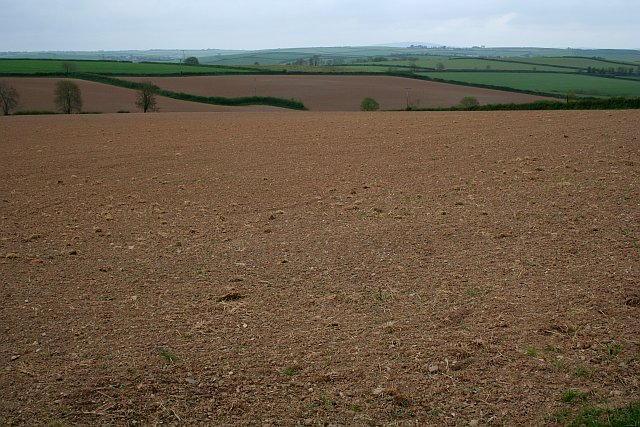 Ploughed Fields near Padderbury