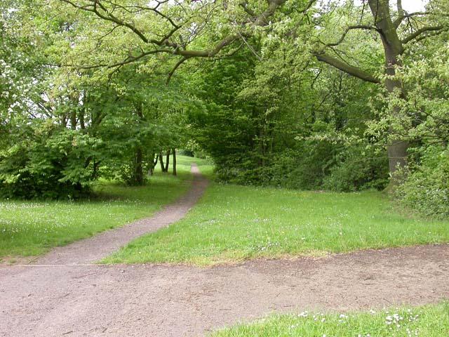 Ecton Brook Linear Park