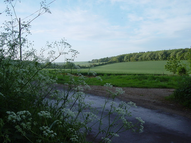 South Warnborough, minor road to Sutton Common