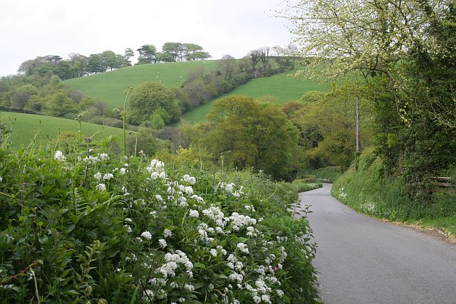 The View from Pengover Road