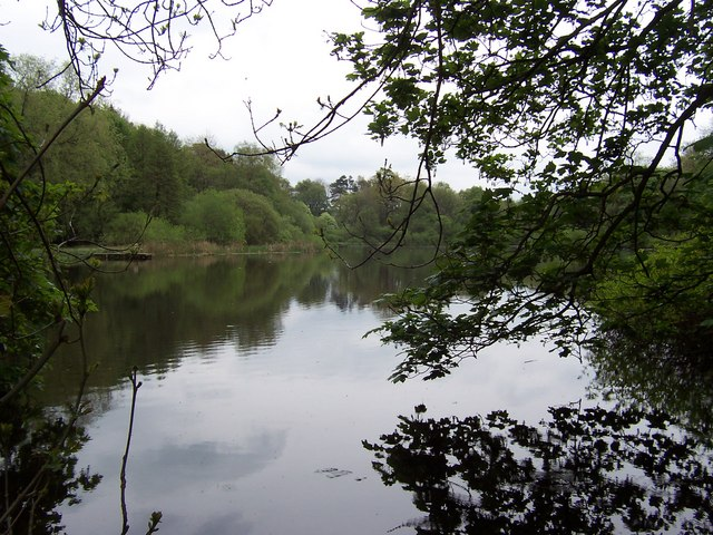 Lake in Tenley Plantation
