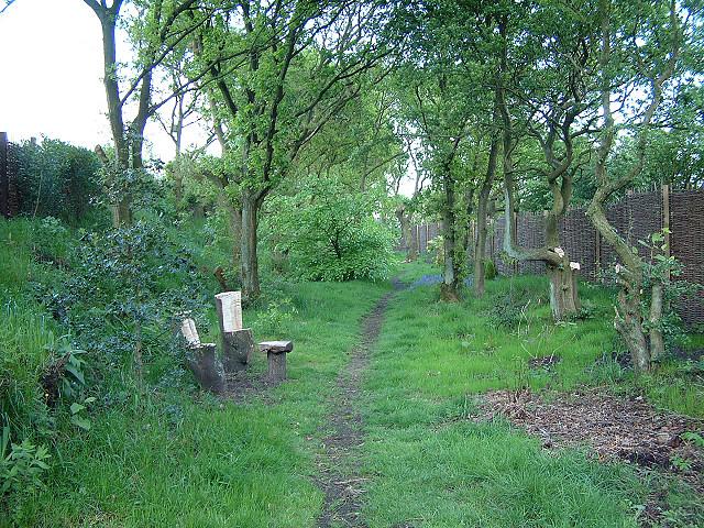 Footpath at Brownlow