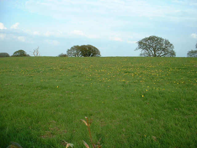 Farmland near Chinnel Farm