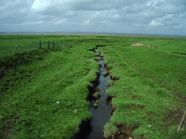 Grass Dyke