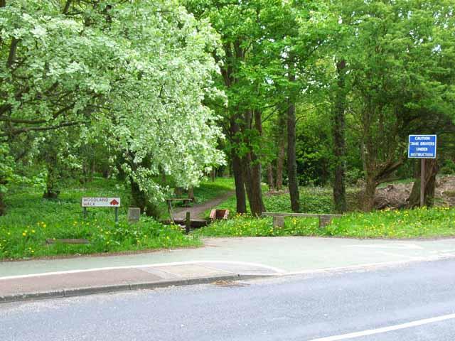 Woodland Walk, Plumer Road