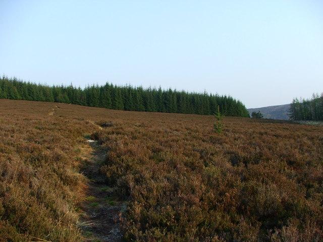 Caiplich prehistoric site