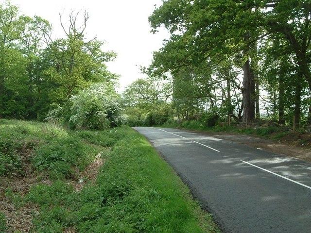 Near Flitwick Plantation