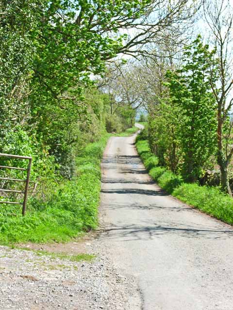 The lane from Halfpenny House to Barden