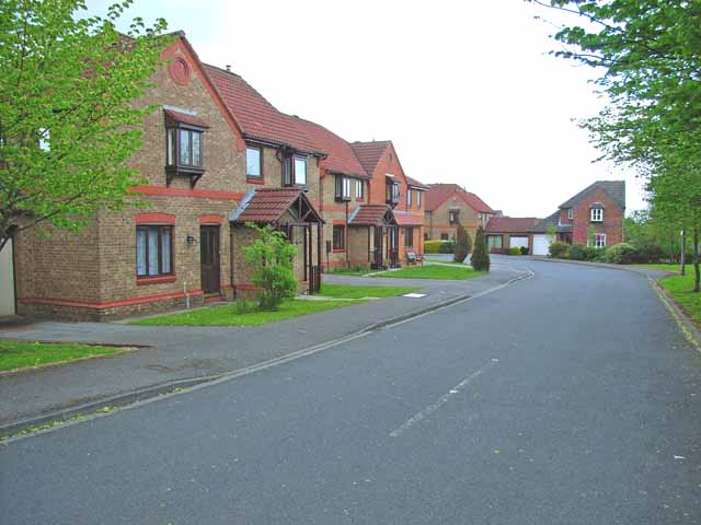Oaktree Avenue, Scotton