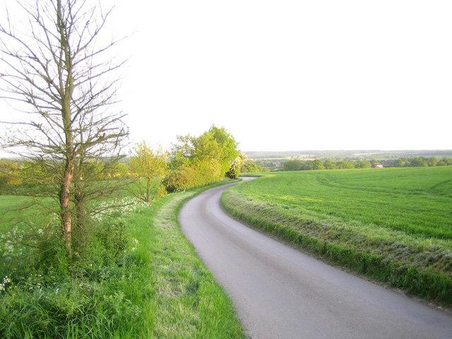 Benington: High Elms Lane