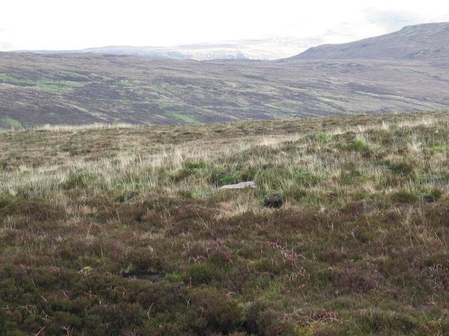 Moorland in Glen Haultin