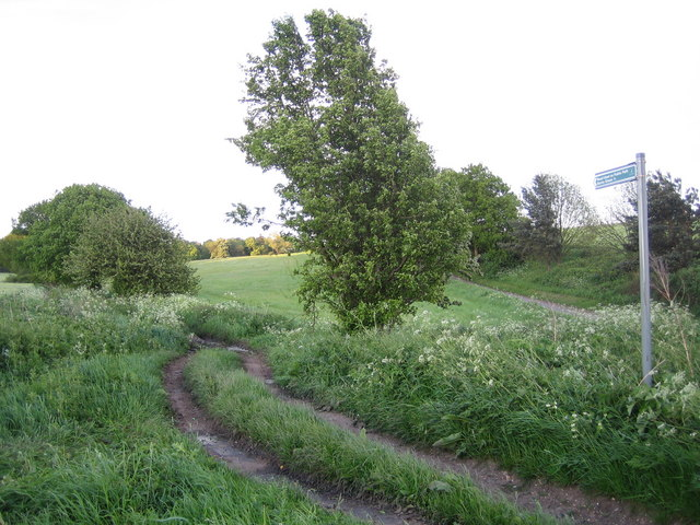 Benington: Road Used as a Public Path