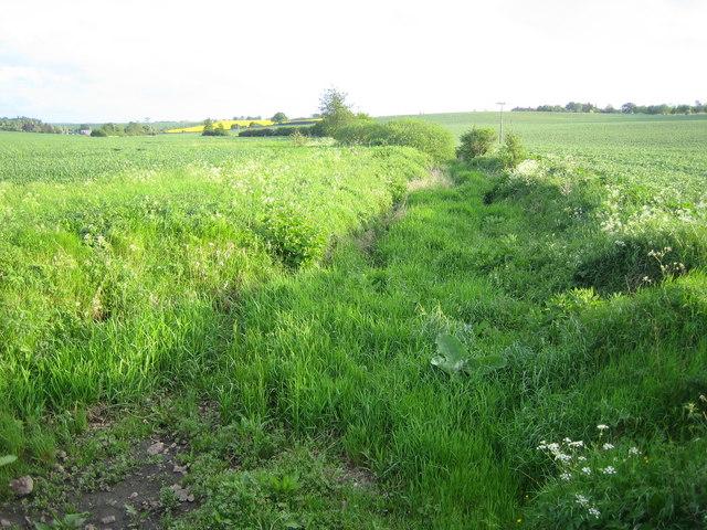 River Beane near Aston