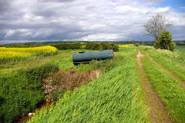 Bonby Carr Lane (Track)