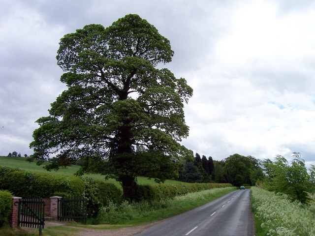 The Road to Saxby All Saints