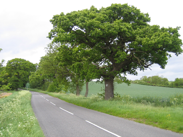 Shefford to Ireland road, Beds