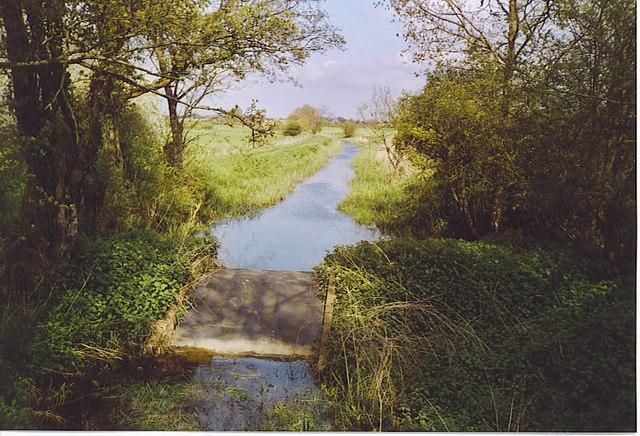 Wey and Arun Canal near Harsfold Bridge.
