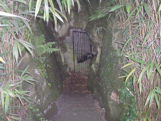 Steps down to Tunnel, Davenham, Malvern