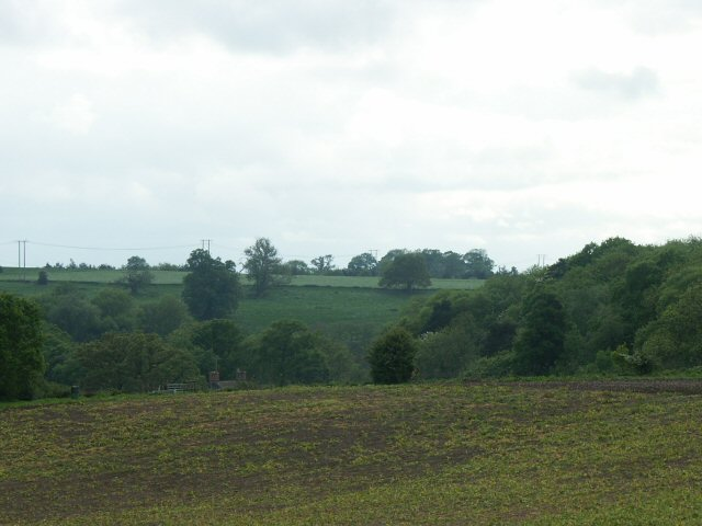 Fields, woods and Brockhill Kennels